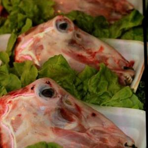 Fresh Halal Baby Goat Head