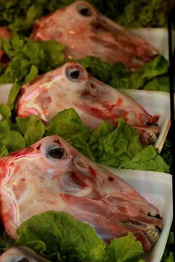 Halal Fresh Baby Lamb Head