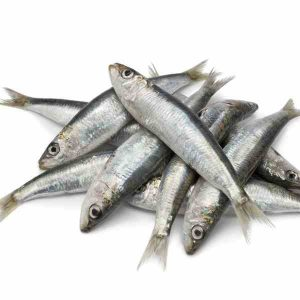 Sardines (2 LB Bag)