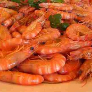 Shrimp Medium (Cooked) 1lbs Bag